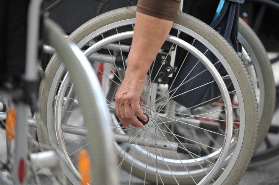 osobe-sa-invaliditetom-nacionalna-sluzba-za-zaposljavanje-javni-radovi-1328585176-115692.jpg