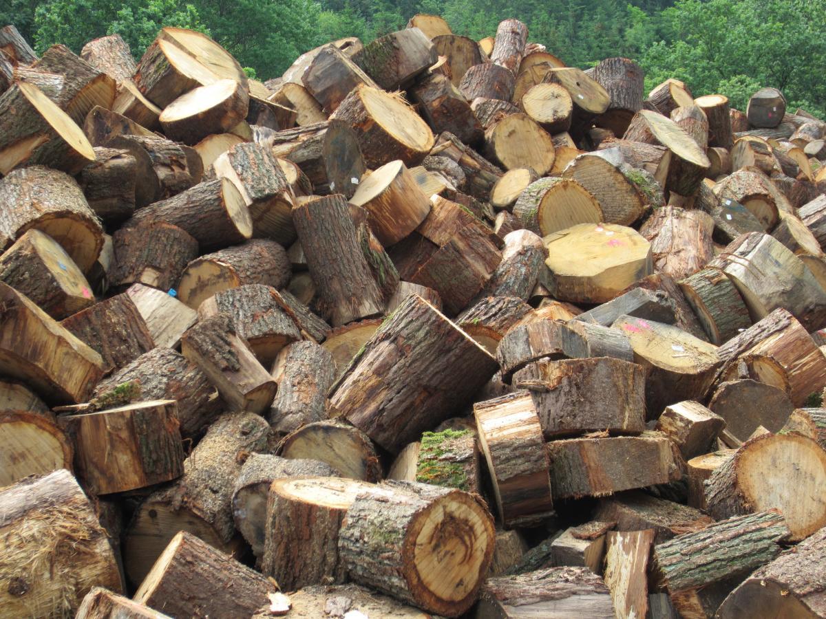 drvo-za-ogrjev-rascjepan-ne-rascjepan-drva-za-potpalu-oblice-necepane.jpg