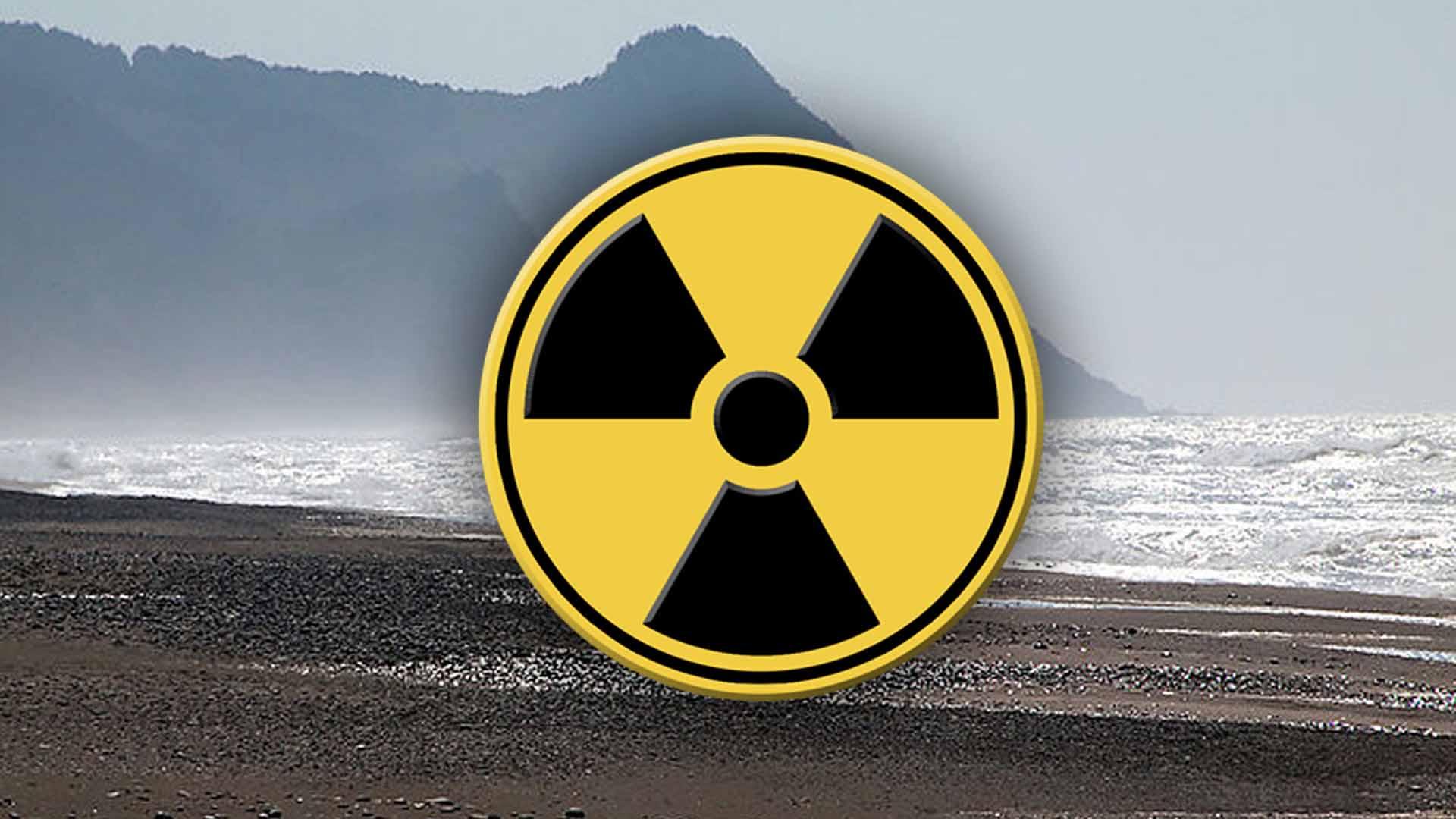 это одна знак радиации фото картинка блюда получается