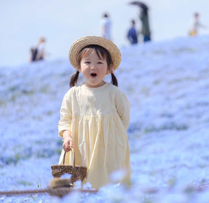 (FOTO) Zavirite u najljepši park svijeta: Četiri miliona plavih cvjetova!